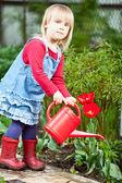 Child watering tulip in the garden — Stock Photo