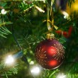Christmas tree decoration — Stock Photo #13739070