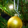 Christmas tree decoration — Stock Photo #13739080