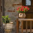 Flowers at the doorway — Stock Photo