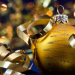 Christmas decoration — Stock Photo #13739979