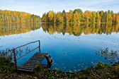Autumn on a quiet forest lake — Stock Photo