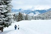 Senderismo en las montañas de invierno — Foto de Stock