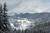 Winter mountain — Stockfoto
