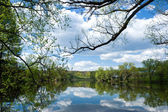 Clouds over pond — Stock Photo