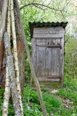 Old outhouse — Stock Photo