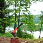 Camping hatchet — Stock Photo #13740536