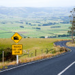 Winding road in New Zealand — Stock Photo