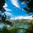Stock Photo: Marlborough Sounds framed view