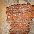 Old brick wall — Stock Photo #13741411