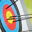 Target archery — Stock Photo