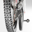 Bicycle with winter tyre — Stock Photo