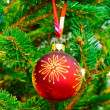 Christmas tree decoration — Stock Photo #13742107
