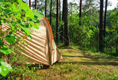 Tent in a forest — Stock Photo
