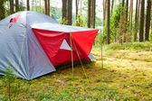 Tenda in una foresta — Foto Stock