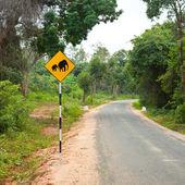 Znak ostrzegawczy słoń — Zdjęcie stockowe