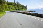 Sunny coastline road — Stock Photo