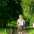 Kid med en hund — Stockfoto #14826929