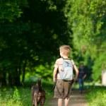 dítě se psem — Stock fotografie