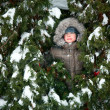 Kid hiding in fir trees — Stock Photo #14827033
