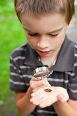 Kid observing snail — Photo