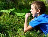 Kid picking berries — Stock Photo