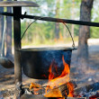 Stock Photo: Cauldron over campfire