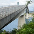 Stock Photo: Skye Bridge