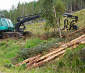 Forest harvester — Stock Photo