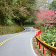 Winding road — Stockfoto
