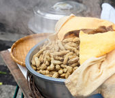 Boiled peanuts — Stock Photo