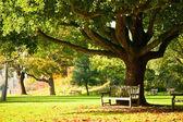 Parque de kew gardens — Foto de Stock