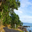 Sunny coastline road — Stock Photo