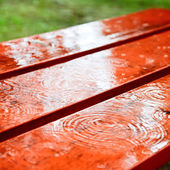 Rain drops on a bench — Stock Photo