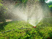 Lawn irrigation — Stock Photo