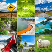 New Zealand set — Stock Photo
