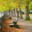 Benches on Thames Embankment — Stock Photo
