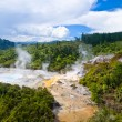 Orakei-Korako Geyserland — Stock Photo