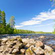 Rapids on river — Stock Photo #34441927