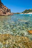 Cala Corsara bay in Sardinia — Стоковое фото