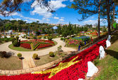 Dalat Flower Gardens — Stock Photo