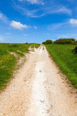North Downs Way path — Stock Photo