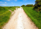 North Downs Way path — Stock Photo