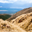 Tongariro National Park in New Zealand — Stock Photo #44214179