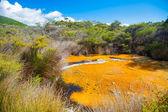 Tokaanu Thermal Pools in New Zealand — Stock Photo