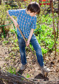 Young boy gardening — Stockfoto