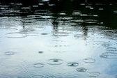Rainy weather — Stok fotoğraf
