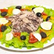 Delicious salad with tuna, tomatoes, eggs, olives and peppers. — Foto de stock #14310641