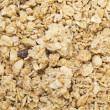 płatek zbóż — Zdjęcie stockowe