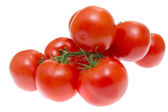Branch of tomatoes isolated on white background — Stock Photo